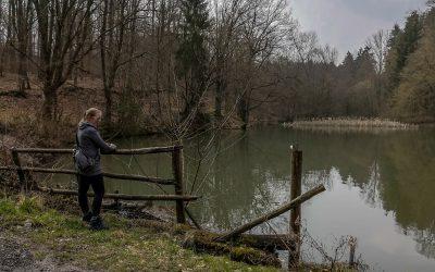 Die Redener Bergbau Trilogie – Teil 2: Der Höfertaler Wald Pfad