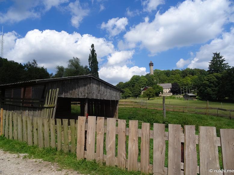 Wildenburg-23