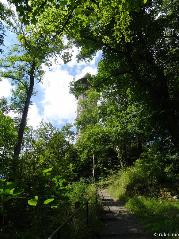 Wildfreigehege Wildenburg