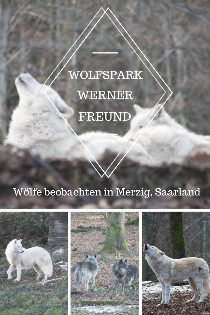 Wolfspark Werner Freund - Merzig