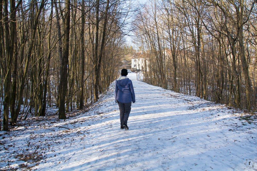 Licht | Eine Sonntagsrunde auf Glatteis um den Heinitzer Weiher | Photo Diary
