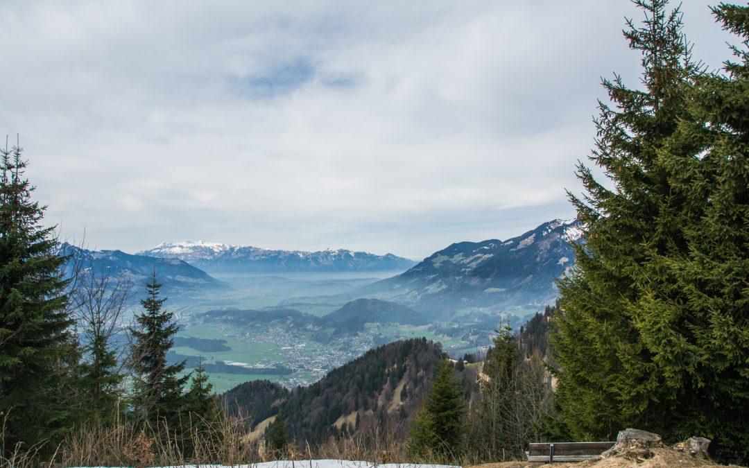 Zwischen Bergen, Blüten und Kaiserschmarrn   Spazieren gehen auf dem Muttersberg bei Bludenz