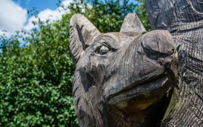 Meine letzte Wanderung mit 25 Jahren | Traumschleife Wolfsweg