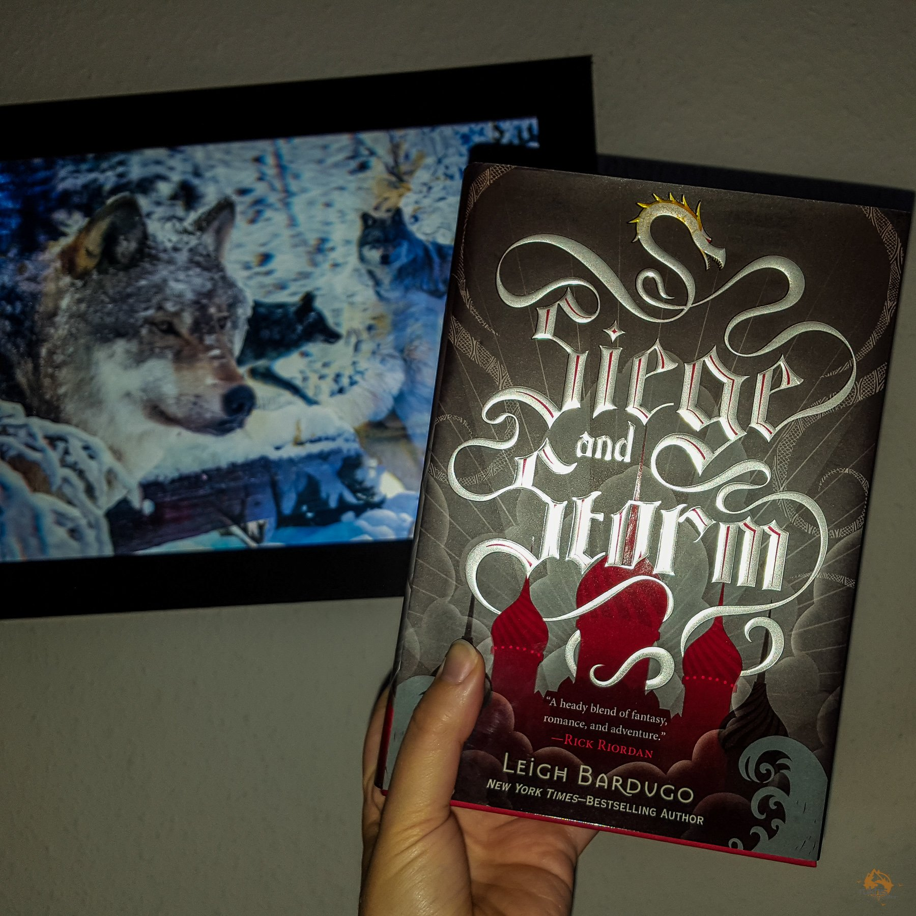 Rezensionen - Siege and Storm - Leigh Bardugo -  Grisha 2