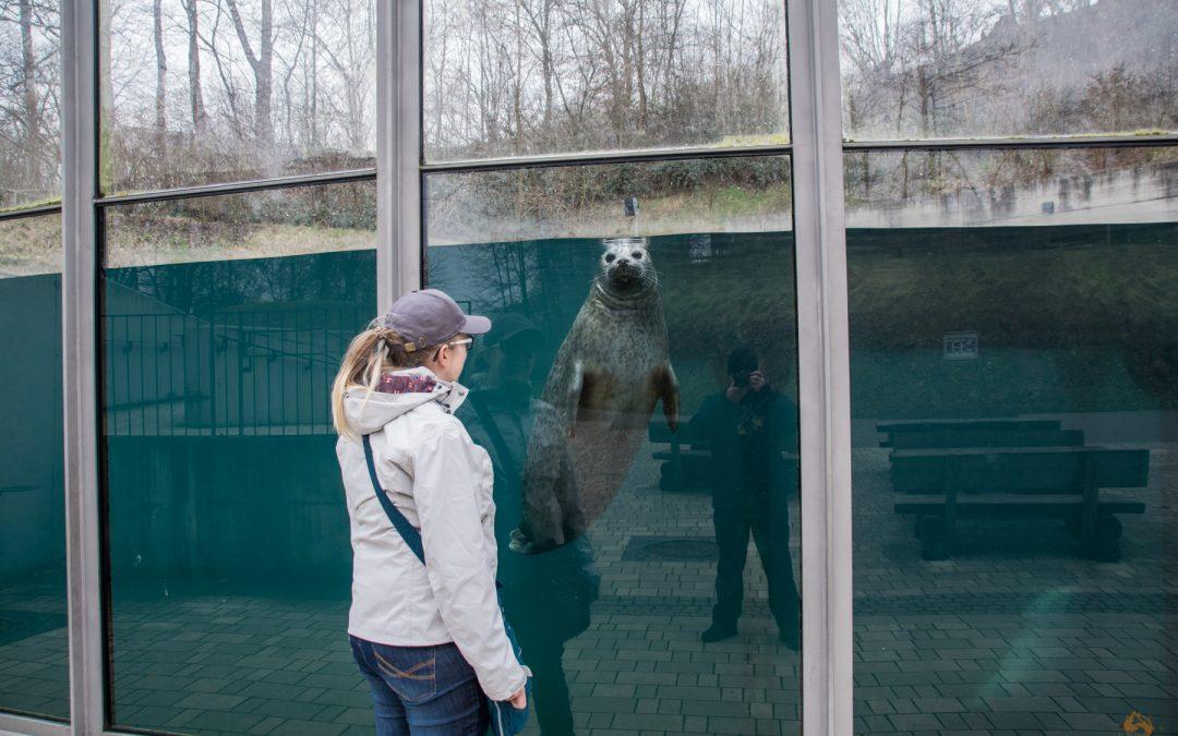 26 von 10 | Schnappschüsse von 10 besonderen Tieren aus dem Saarbrücker Zoo
