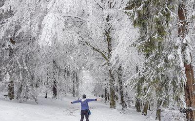 Ein paar Stunden… im Schnee   Winter Wonderland auf dem Erbeskopf im Nationalpark Hunsrück-Hochwald