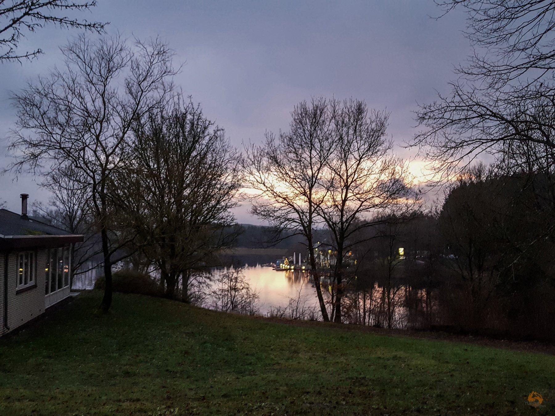 Ausblick aus dem Ferienhaus im Landal Hochwald- Kell am See - Rheinland Pfalz