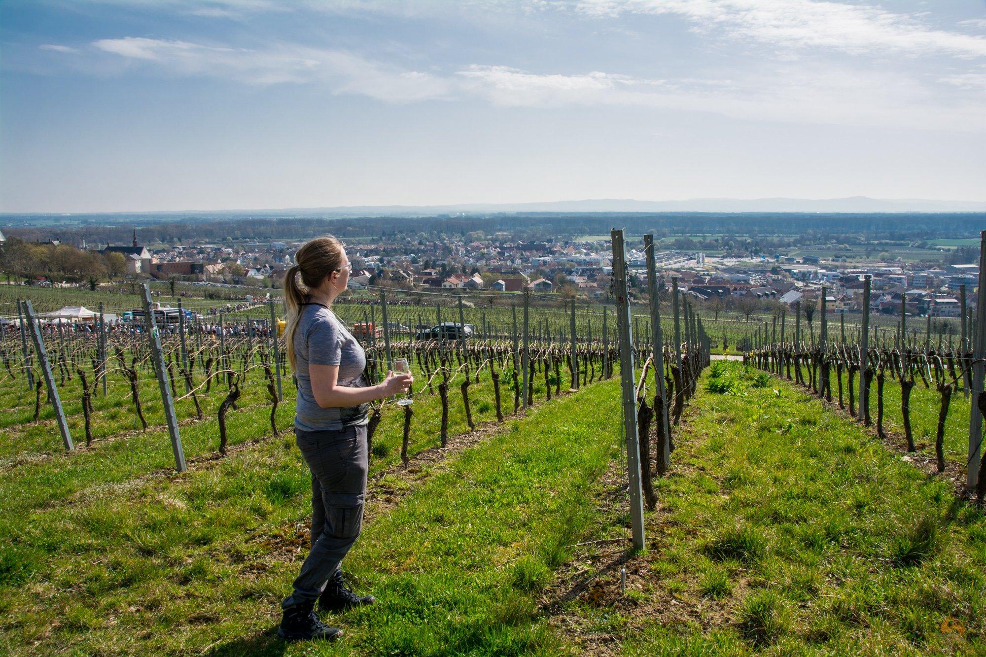 Schlemmerwanderung Oppenheim - April 2018 - Rheinhessen