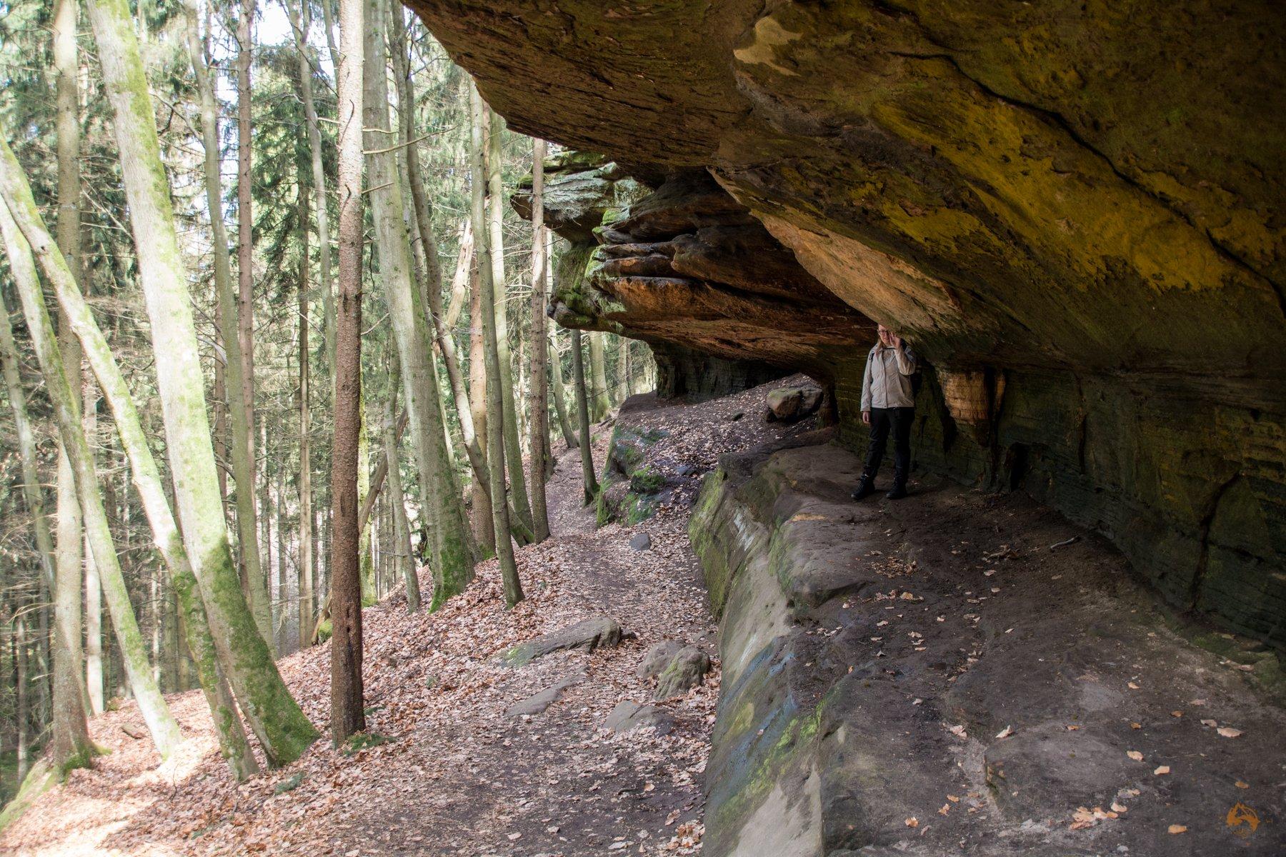 Wandern im Saarland - Kirkel Felsenpfad