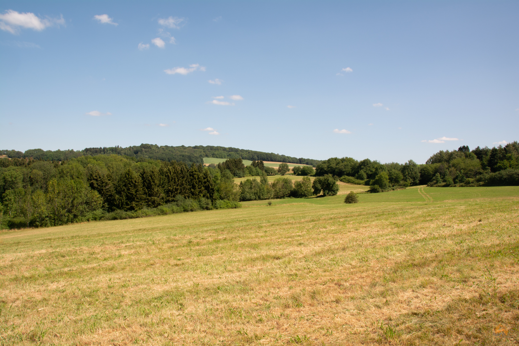 SchauInsLandWeg bei Ottweiler Saarland