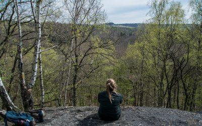Wo die Natur sich den Kohlenwald zurückholt… auf Urwaldtour vor den Toren der Stadt Saarbrücken