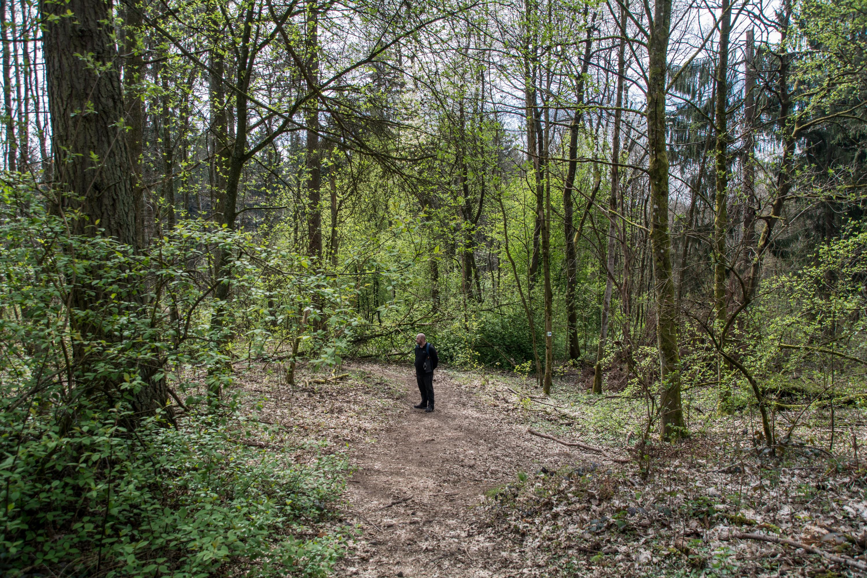 Urwaldtour vor den Toren der Stadt Saarbrücken