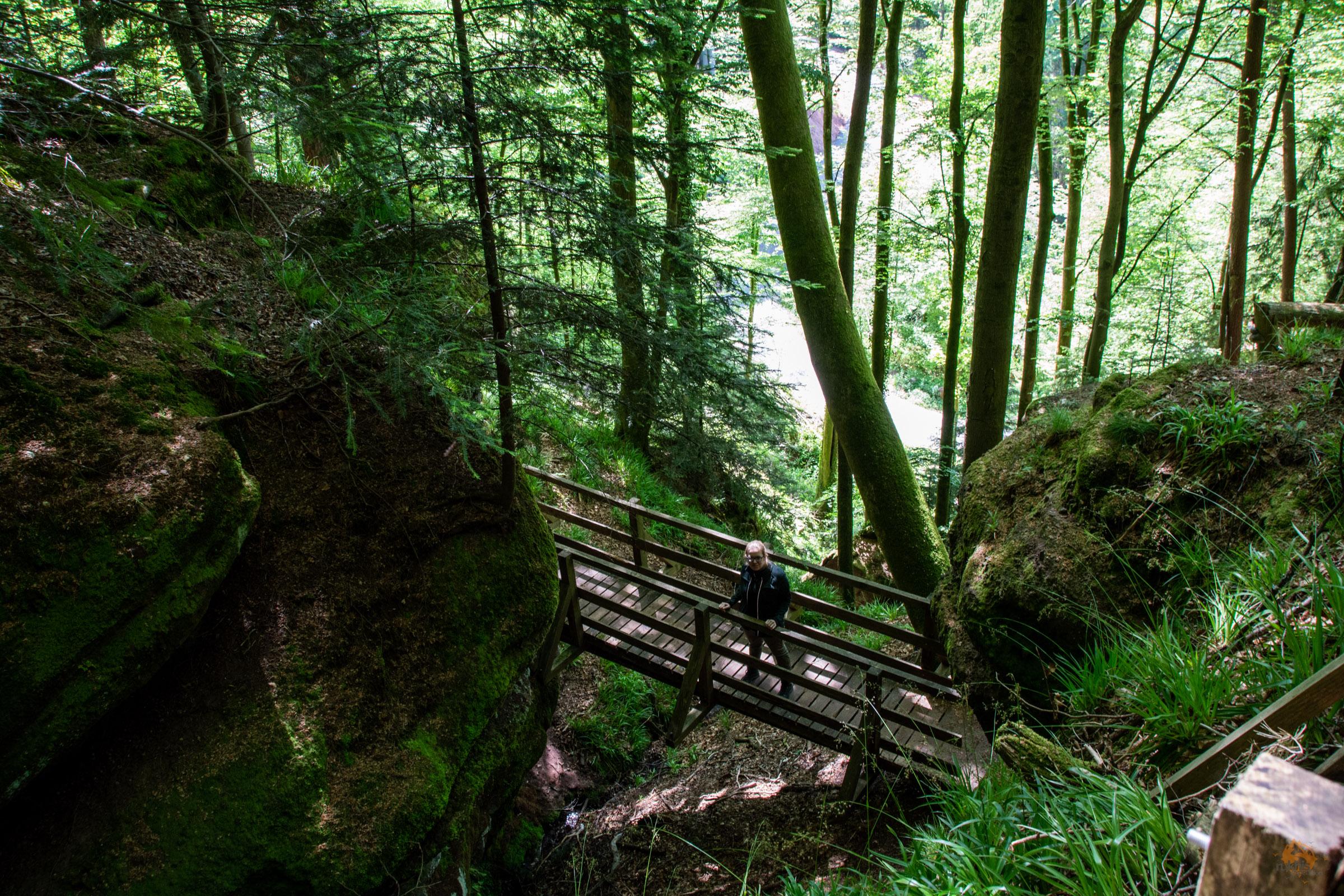 Teufelspfad | Niedersimten | Pirmasens | Rheinland-Pfalz