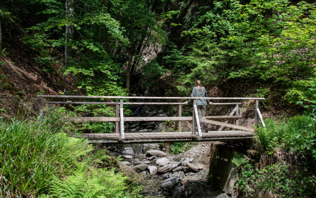 Schluchten- und Brückenpfad im Helletal | Alpenfeeling mitten in Winterberg im Sauerland