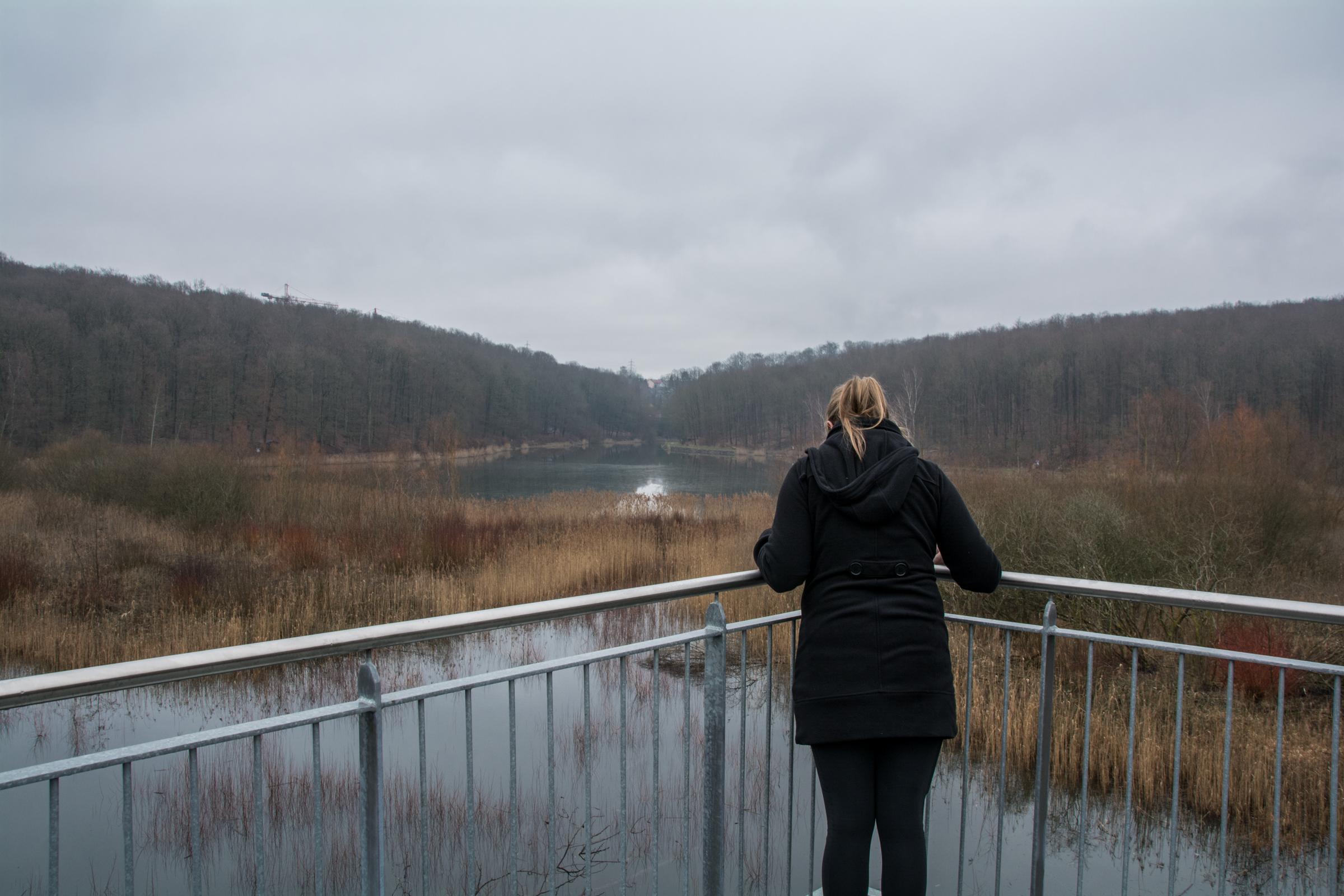 Saufangweiher | Grubenstandort Maybach | Friedrichsthal | Saarland | Bergbau